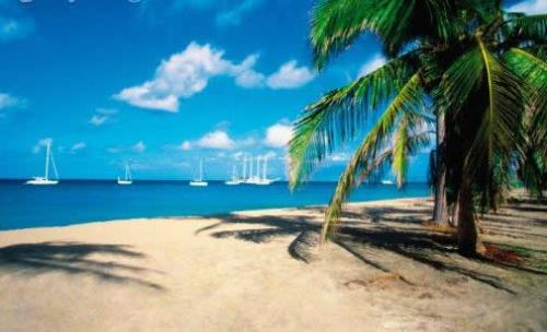 nevis-property-for-sale